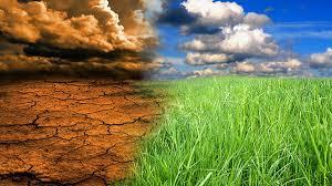 Türkiye İklim Değişikliği İle Mücadele Liderlik Yapmalı